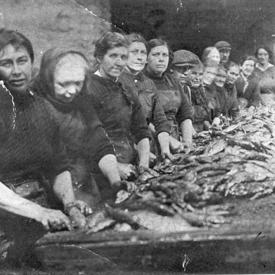 Herring Gutters at Work in Craig's Yard, Dunbar, 1930s